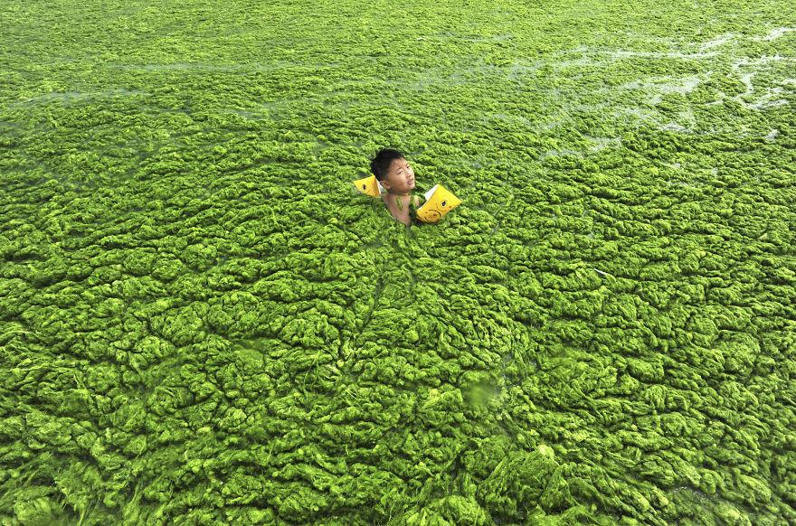 Ένα αγόρι κολυμπάει στον φύκια γεμάτο ακτογραμμή του Qingdao