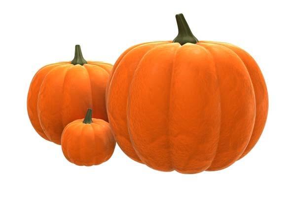pumpkin_ltmjyv